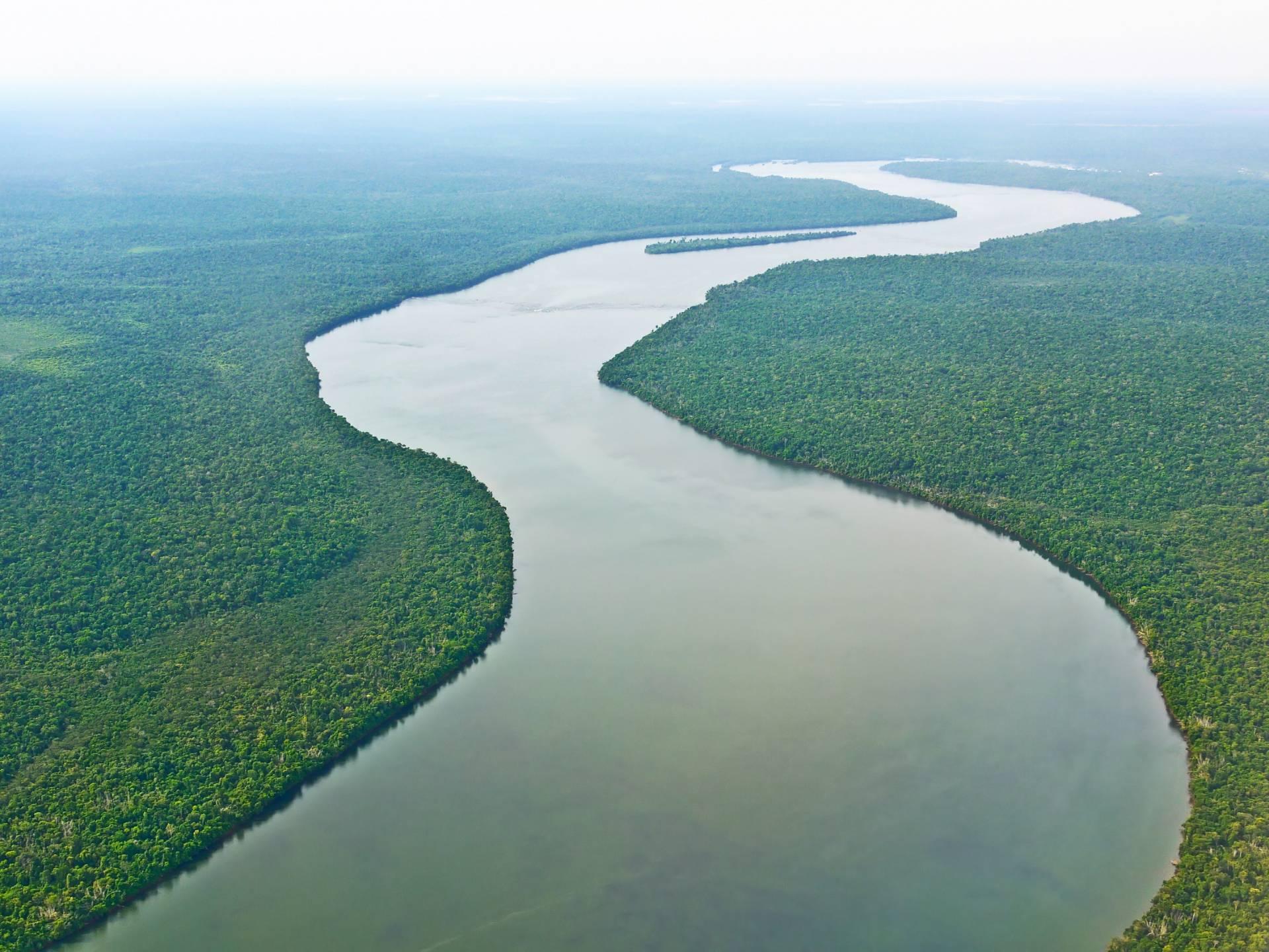 Amazonie fleuve