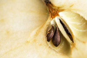 Pépin de pomme antioxydant - Ekia