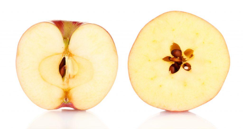 actif pépins de pomme